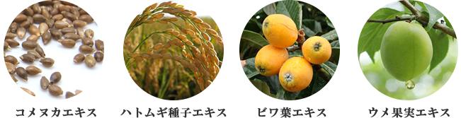 初雪の雫シリーズ和漢植物エキス