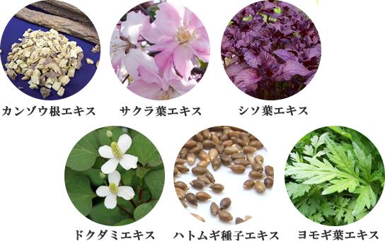 初雪の雫シリーズ和漢植物の内容